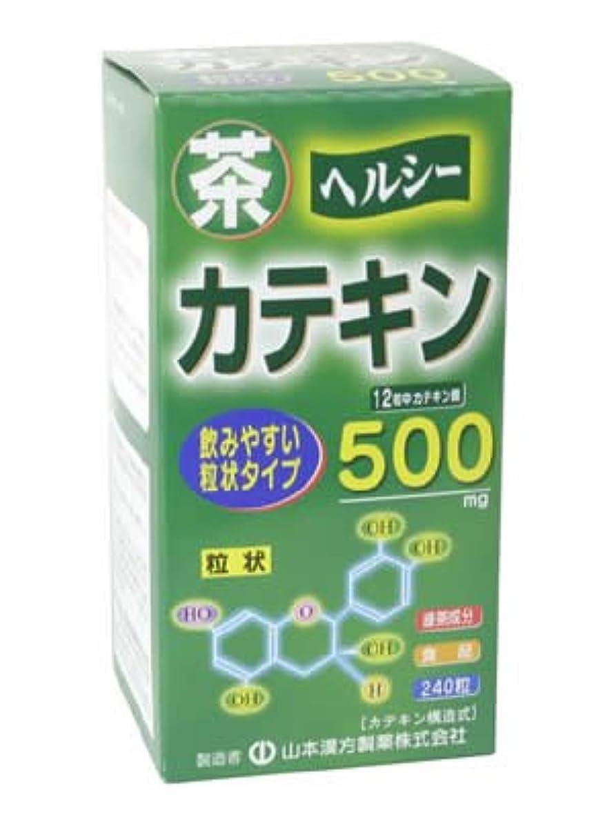 吸う有益な矩形茶カテキン粒 240粒
