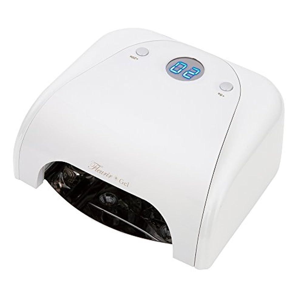 驚いたことに安西暖炉Fleurir フルーリアジェル LED LIGHT ホワイト