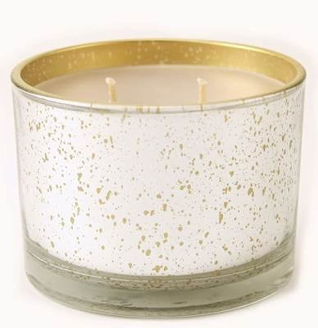 感動する診断する走るKathina Tyler Statureプラチナにゴールド16oz香りつきJar Candle