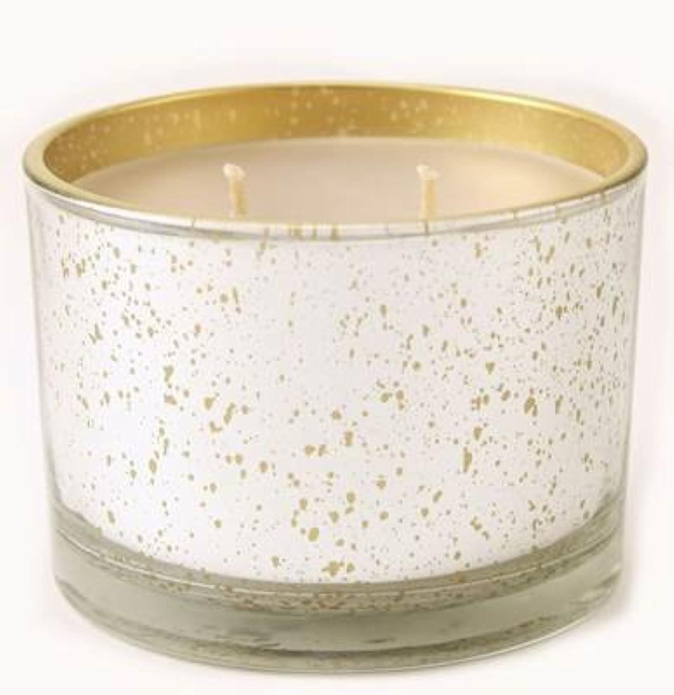つづり姓プロフェッショナルKathina Tyler Statureプラチナにゴールド16oz香りつきJar Candle