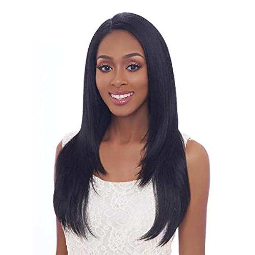 バッジ食事ガチョウ黒の長いストレートヘアウィッグファッションナチュラルウィッグ24インチ
