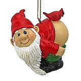 (Pack of 1, Loonie Moonie) - Christmas Ornament - Garden Gnomes Figurine - Loonie Moonie Gnome - Naughty Gnomes - Mooning Gnomes Statues - Christmas Decorations