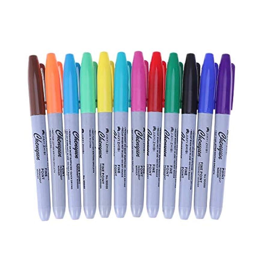 着陸郡無許可Healifty タトゥーペン防水高品質マーカーペン12色スキンマーカーペンスクライブツールタトゥー用品24ピース