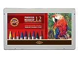 コヒノール 水溶性色鉛筆 プログレッソアクアレル 8782012001 8782 12色セット 正規輸入品