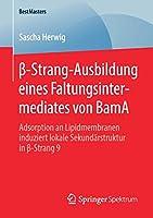 β-Strang-Ausbildung eines Faltungsintermediates von BamA: Adsorption an Lipidmembranen induziert lokale Sekundaerstruktur in β-Strang 9 (BestMasters)