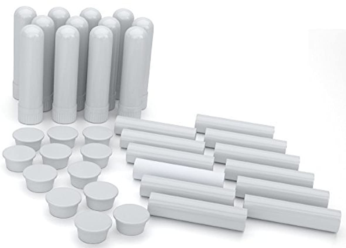 ほのか欠乏液化するEssential Oil Aromatherapy Blank Nasal Inhaler Tubes (12 Complete Sticks), Empty White Vapor Inhalers w/Wicks...