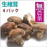 【生椎茸 4パック】原木栽培生椎茸5~6枚入×4パック【送料込】
