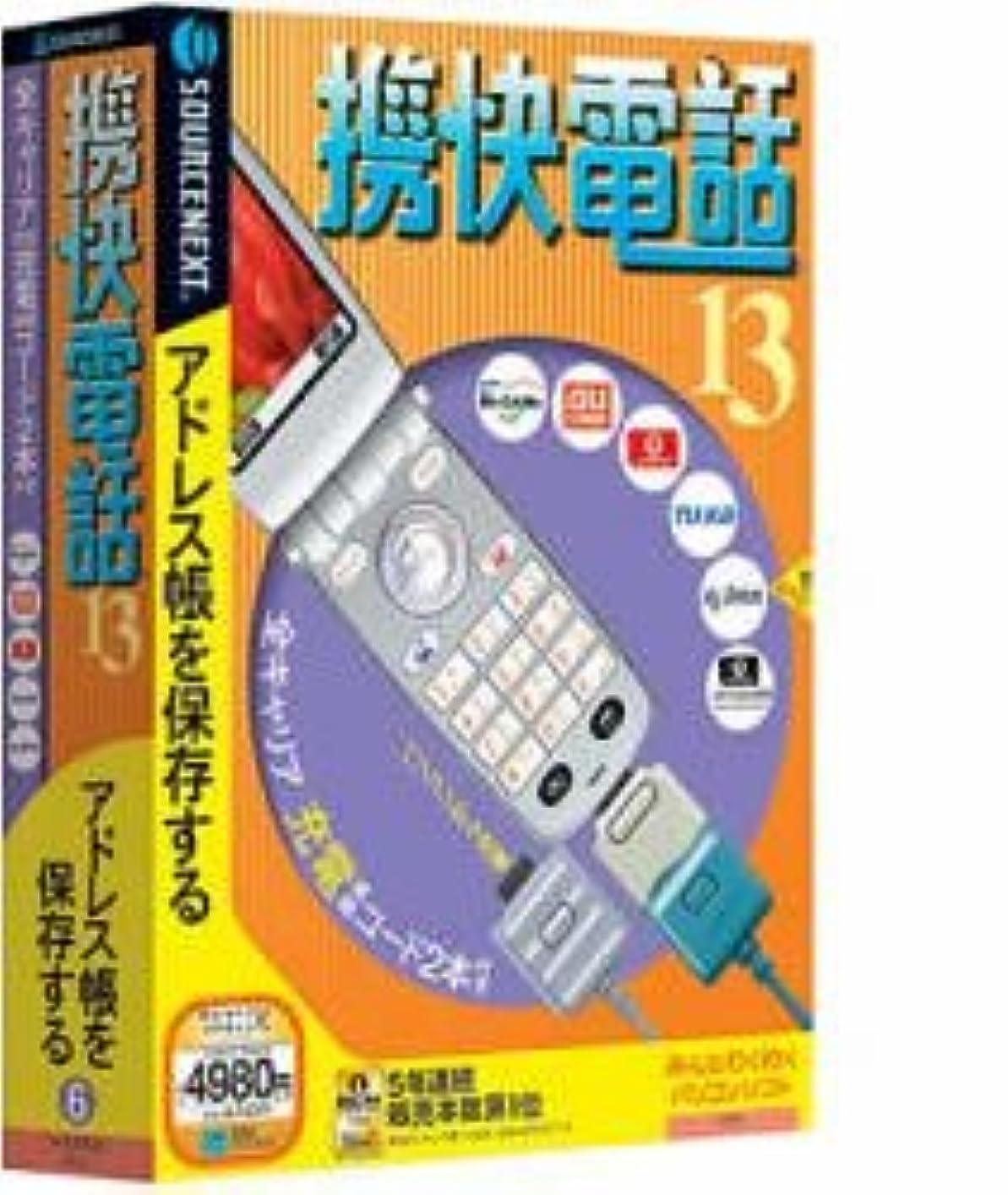 将来のつらい正気携快電話 13 全キャリア対応USB充電コード付き (説明扉付き厚型スリムパッケージ版)
