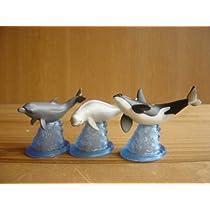 地球生命紀行 シーラカンス 水族館 の 仲間たち 人気 3種 魚 全3種 1 スナメリ2 シャチ3 バンドウイルカガ