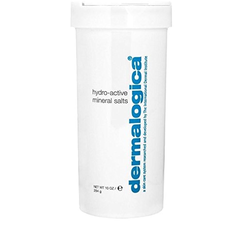 知覚無傷こねるダーマロジカ水力アクティブミネラル塩284グラム x4 - Dermalogica Hydro Active Mineral Salt 284g (Pack of 4) [並行輸入品]