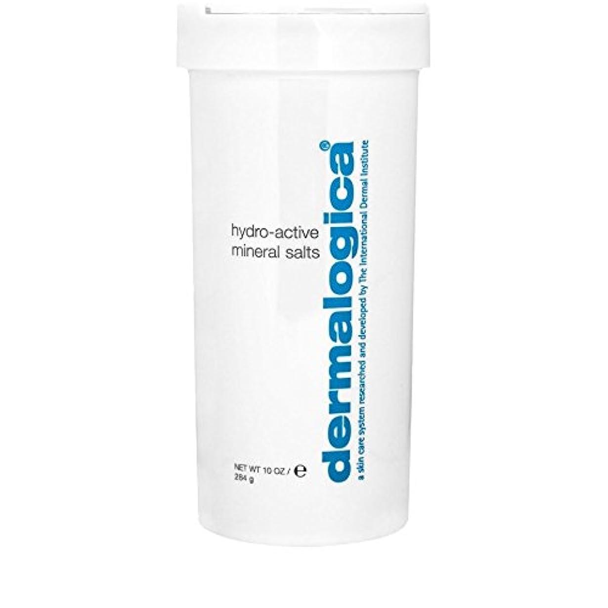 廃棄ジョージバーナードアラブ人ダーマロジカ水力アクティブミネラル塩284グラム x4 - Dermalogica Hydro Active Mineral Salt 284g (Pack of 4) [並行輸入品]