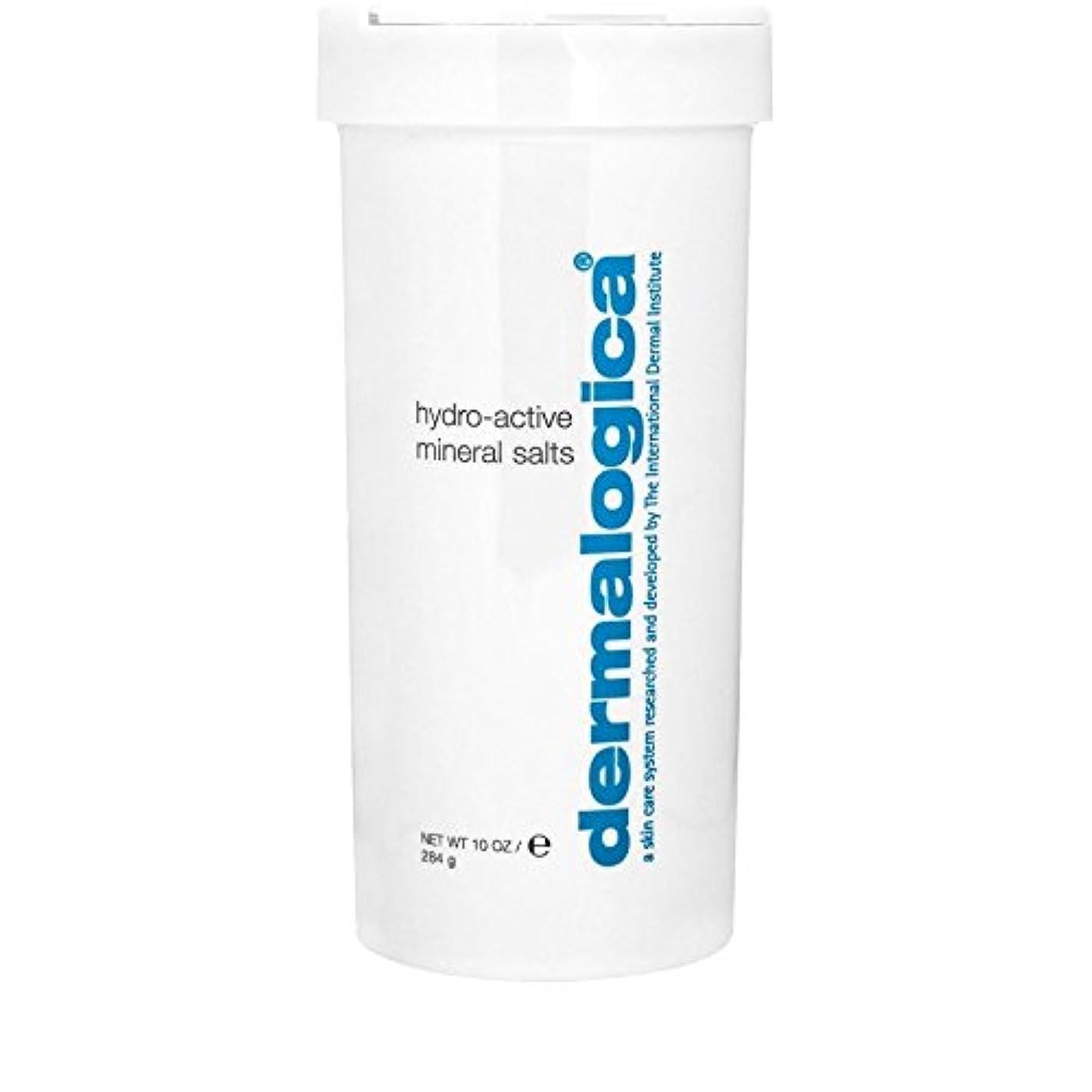 製品フリンジピザダーマロジカ水力アクティブミネラル塩284グラム x4 - Dermalogica Hydro Active Mineral Salt 284g (Pack of 4) [並行輸入品]