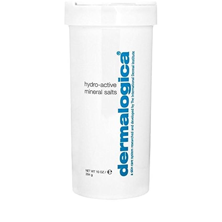 争うきらめくグローバルダーマロジカ水力アクティブミネラル塩284グラム x4 - Dermalogica Hydro Active Mineral Salt 284g (Pack of 4) [並行輸入品]