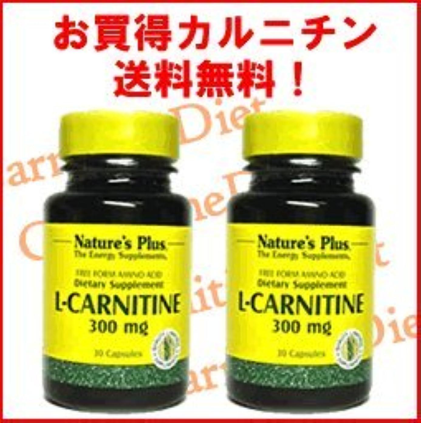 数スパーク存在L-カルニチン300mg 2本セット