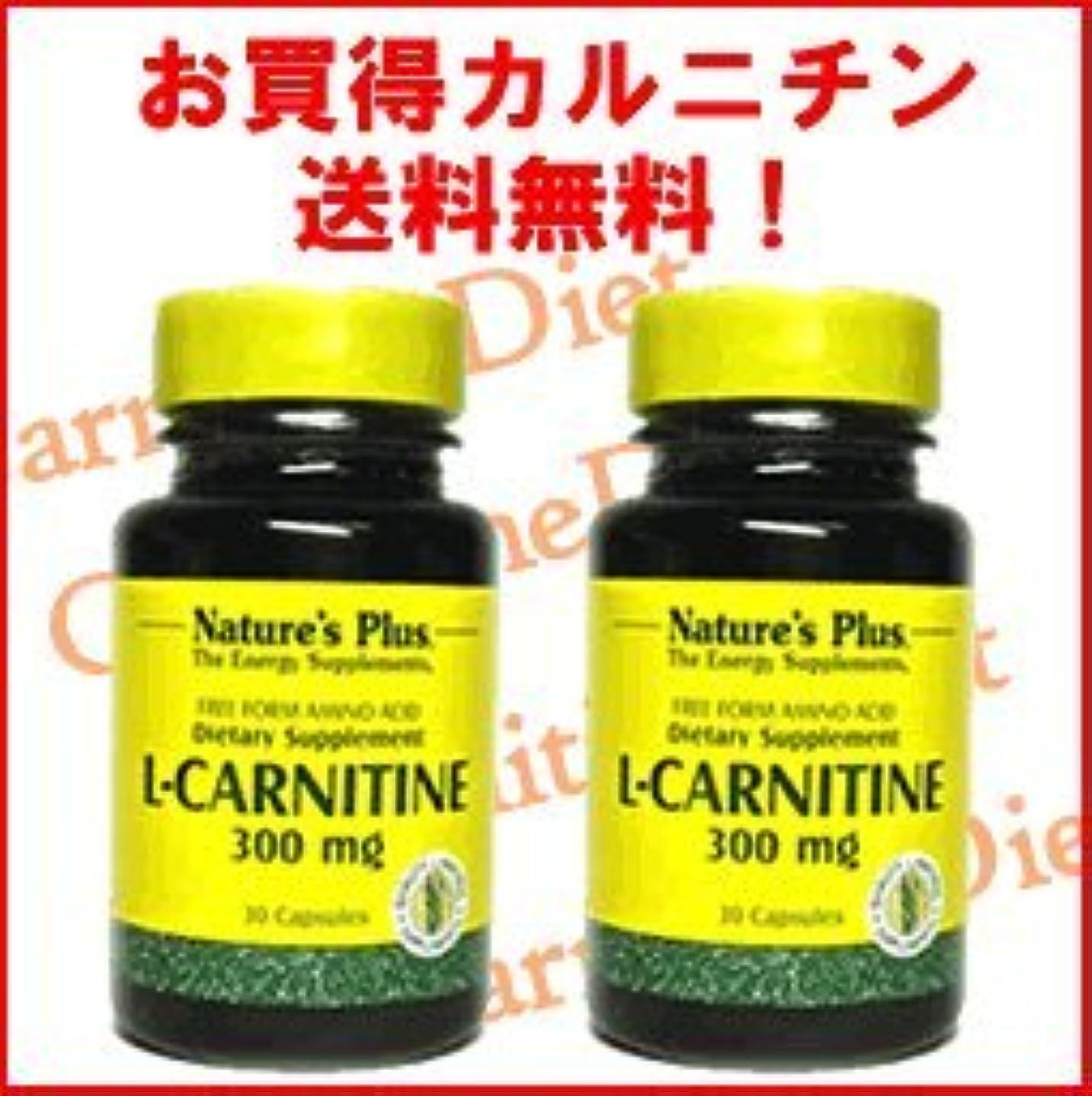 する最大化する慣れているL-カルニチン300mg 2本セット