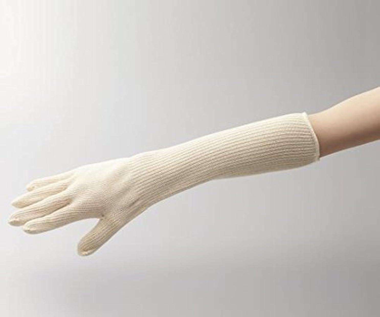 急速なルーム方法オートクレーブ手袋ロング