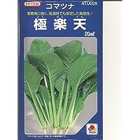 小松菜  極楽天 タキイ交配 タキイの小松菜種です   (グリーンデポ)