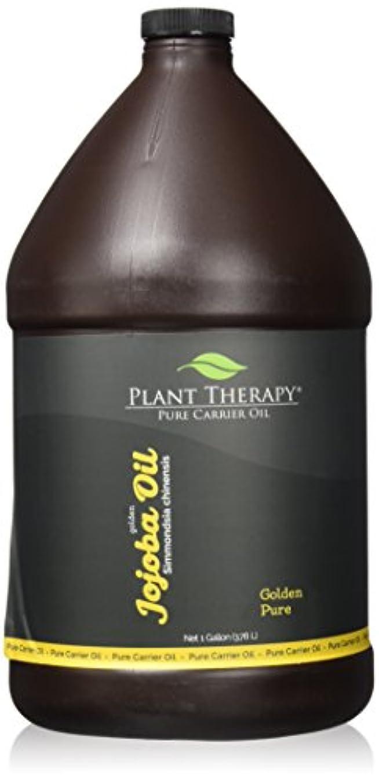 動的薄汚い不屈植物セラピーホホバゴールデンキャリアオイル。アロマセラピー、エッセンシャルオイルやマッサージを使用するための基油。 1人のギャル。