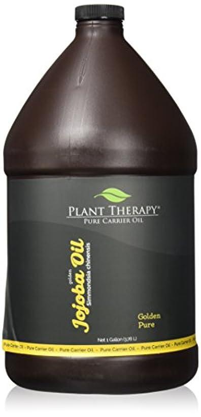 変更可能コンテンツテセウス植物セラピーホホバゴールデンキャリアオイル。アロマセラピー、エッセンシャルオイルやマッサージを使用するための基油。 1人のギャル。