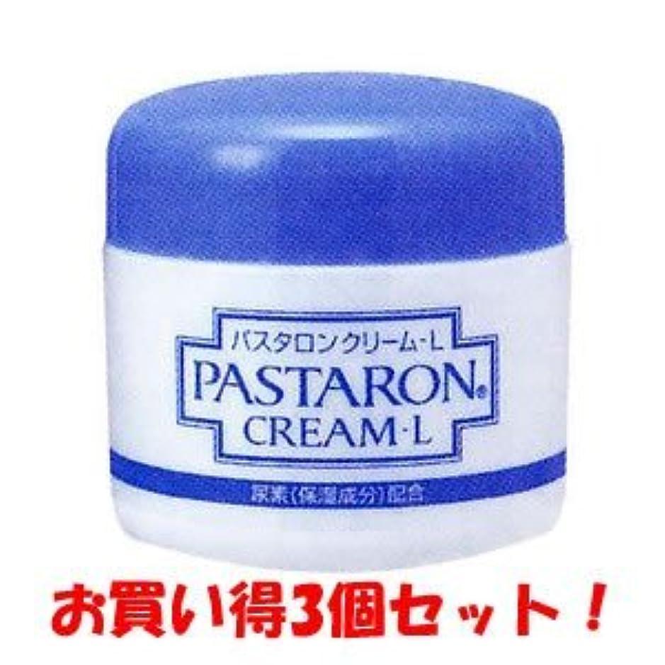 シニスベリー民主党【佐藤製薬】パスタロンクリームL 60g(医薬部外品)(お買い得3個セット)
