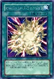 遊戯王OCG オーバーロード・フュージョン POTD-JP042-R パワー・オブ・ザ・デュエリスト