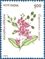Flowers Flower - Lagerstroemia Speciosa Rs.1 Indian Stamp