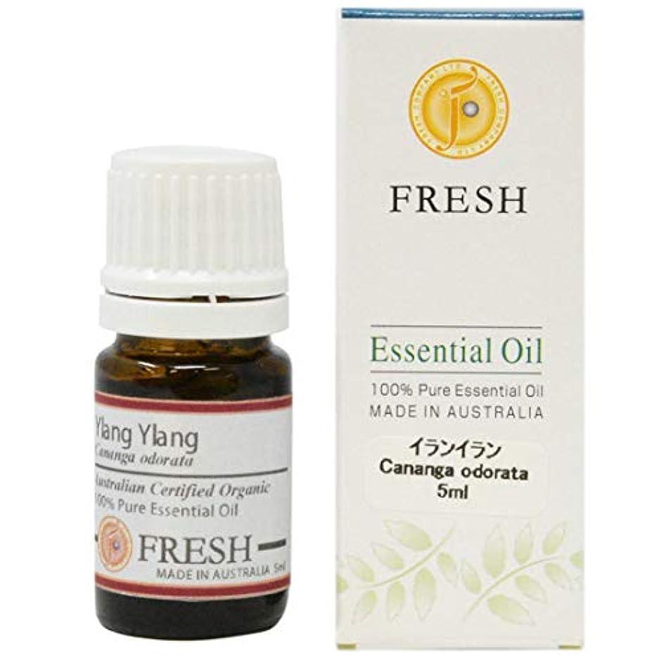 不振会話かみそりFRESH オーガニック エッセンシャルオイル イランイラン 5ml (FRESH 精油)
