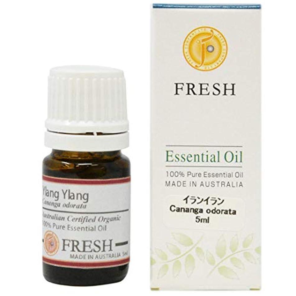 アコー可塑性信頼できるFRESH オーガニック エッセンシャルオイル イランイラン 5ml (FRESH 精油)
