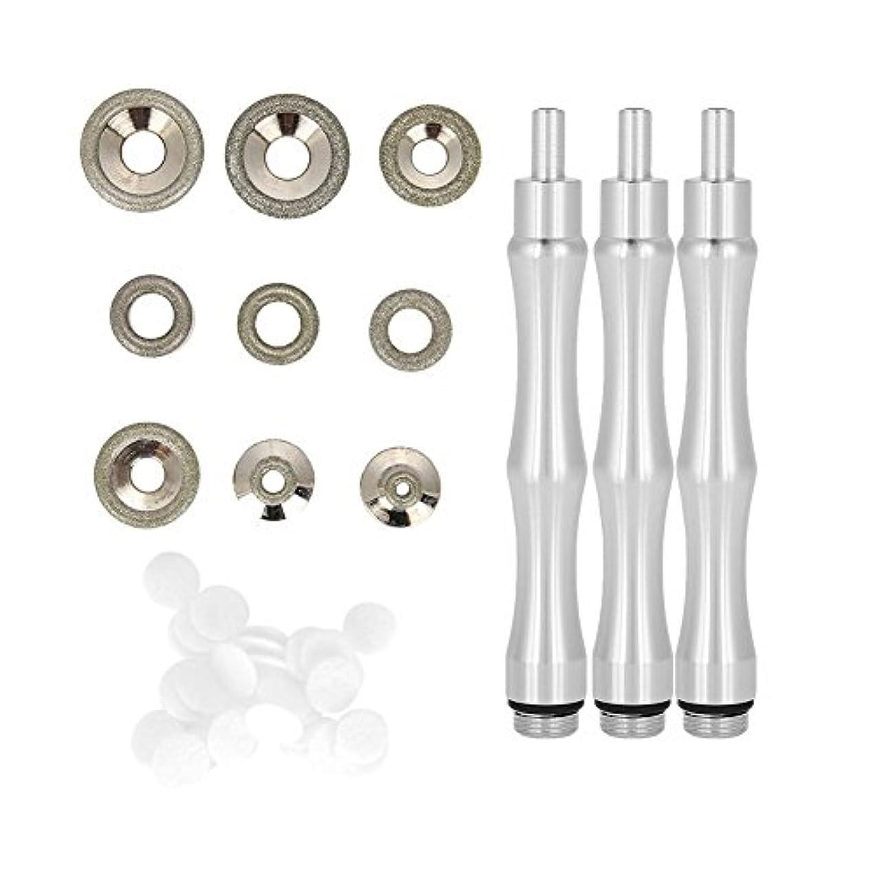 ダイヤモンドマイクロダーマブレーションヒント 、交換用、ハンドル付き、ステンレススチール製フィルターセット