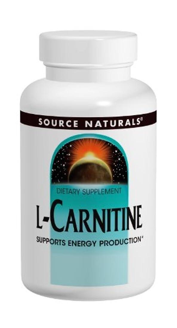 貞腫瘍乱気流L-カルニチン 500mg 120Caps 海外直送品