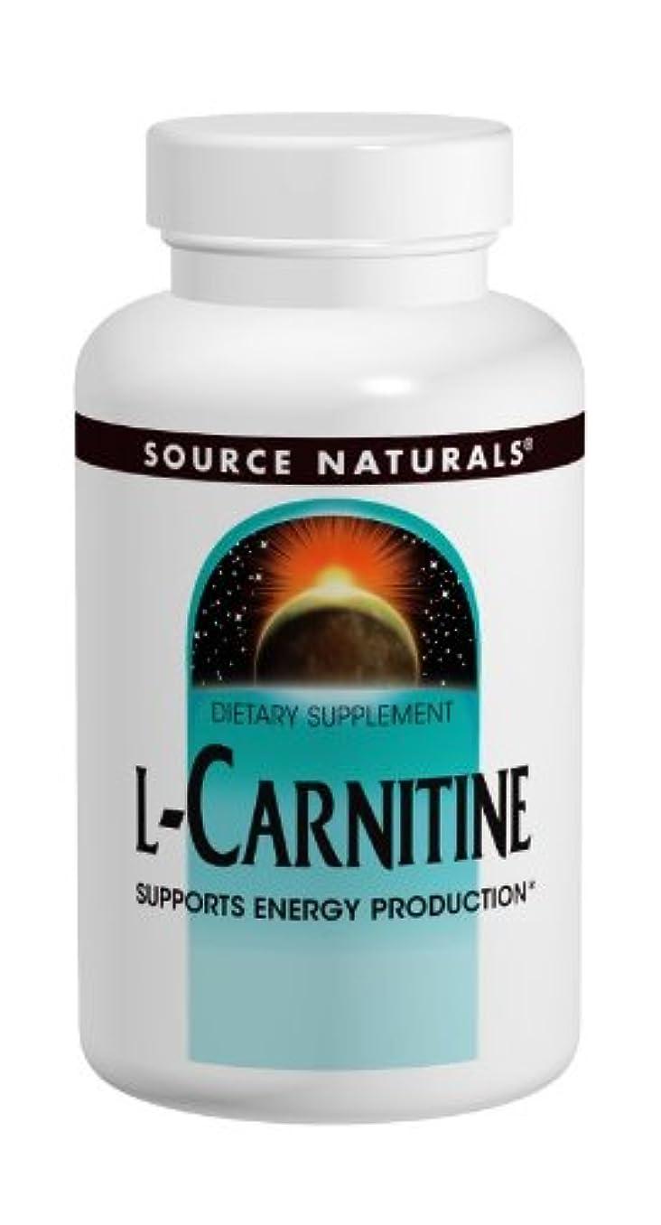 実験室捧げる力学L-カルニチン 500mg 120Caps 海外直送品