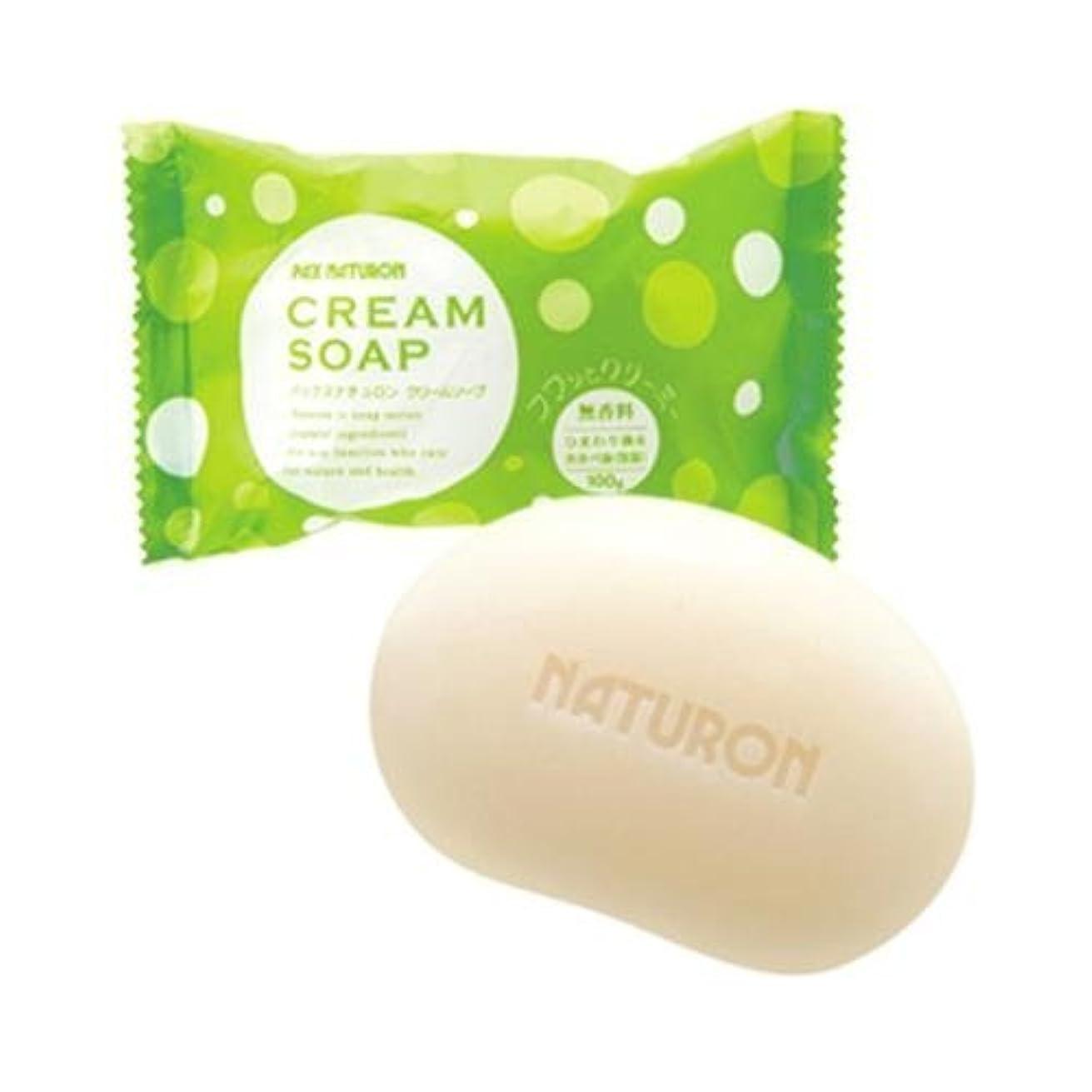スクレーパーコンパス洗剤パックスナチュロン クリームソープ 無香料 100g