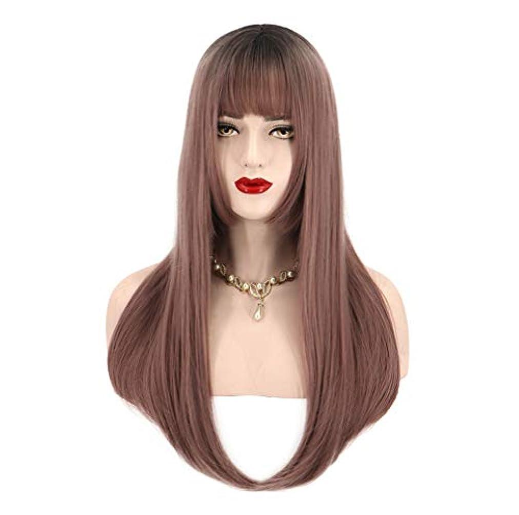達成性差別君主女性用人工毛ウィッグロングストレート耐熱性毛先取り済み150%密度ブラウン65cm