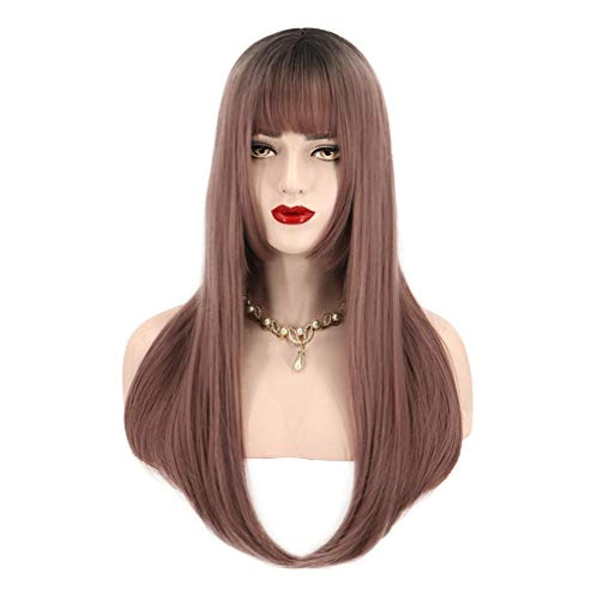 上憧れ霜女性用人工毛ウィッグロングストレート耐熱性毛先取り済み150%密度ブラウン65cm