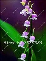12:珍しいカラフルなユリの谷間Convallaria Majalis多年生の花の種、プロフェッショナルパック、50種子/パック、非常に美しい