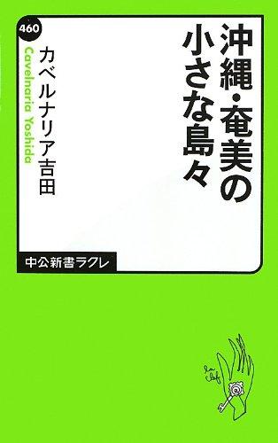 沖縄・奄美の小さな島々 (中公新書ラクレ)