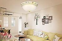 Haiyao シーリングライト、ホームリビングルームのベッドルームシーリングライト、北欧のキノコクリエイティブパーソナリティラウンジBedroomsodernミニマリストのファッションサイクルとしてLed天井ランプ (Color : Medium)