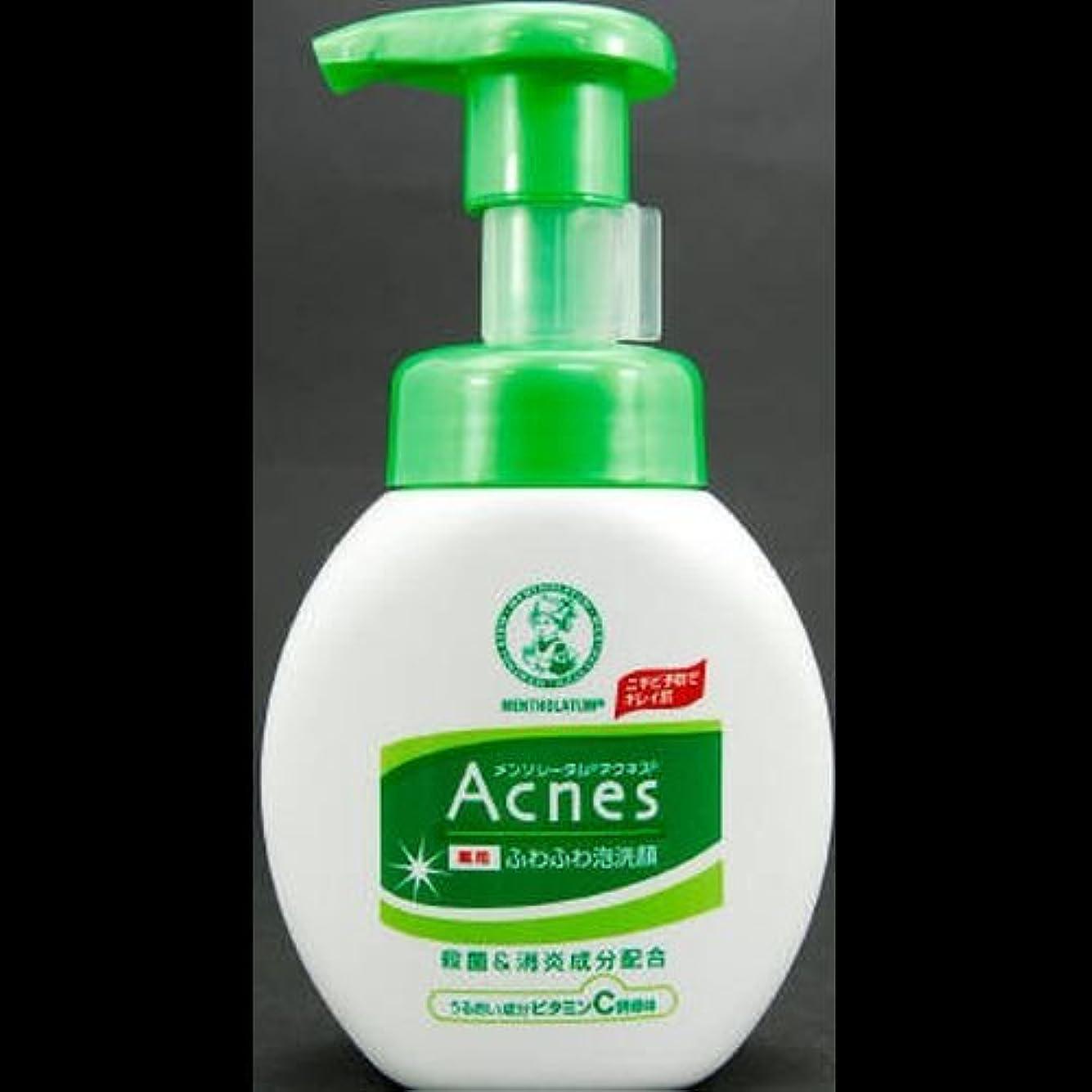 冗長代数地下【まとめ買い】アクネス 薬用ふわふわ泡洗顔 160mL ×2セット