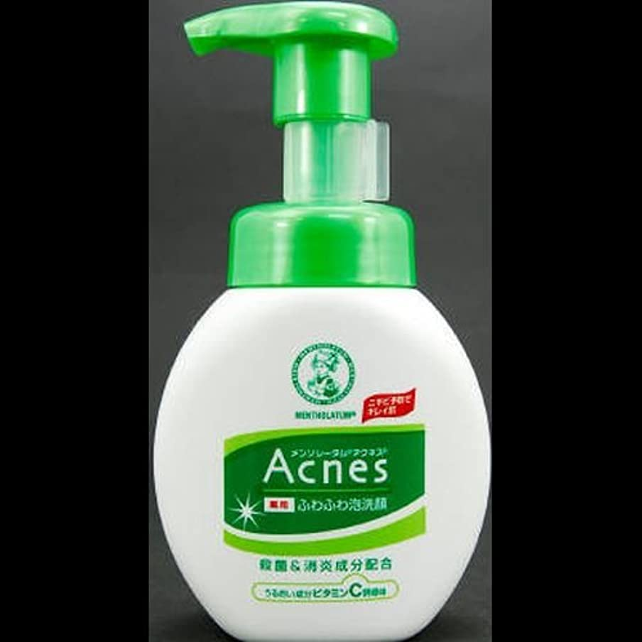 オーバーヘッドインスタンス受信【まとめ買い】アクネス 薬用ふわふわ泡洗顔 160mL ×2セット