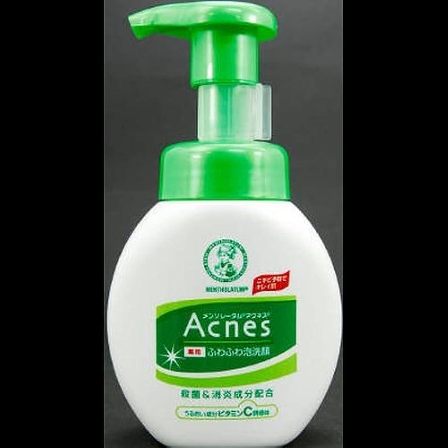 鋭くブラウズ強要【まとめ買い】アクネス 薬用ふわふわ泡洗顔 160mL ×2セット