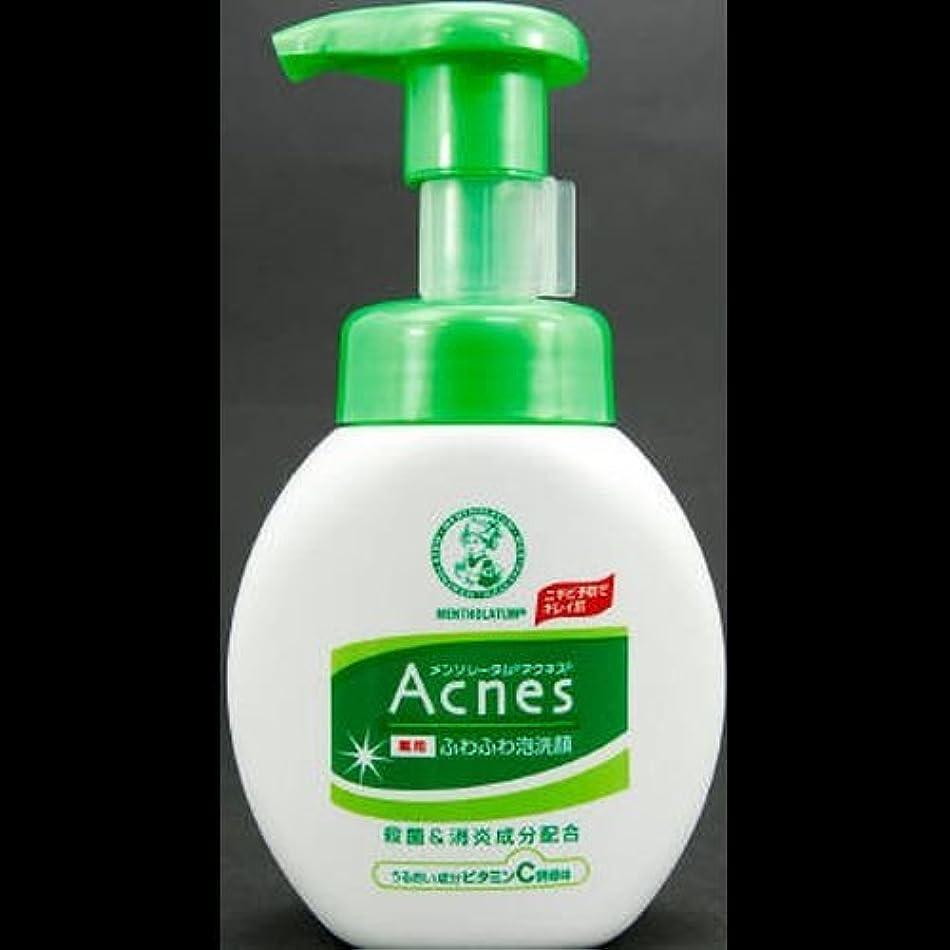 対話データ塗抹【まとめ買い】アクネス 薬用ふわふわ泡洗顔 160mL ×2セット