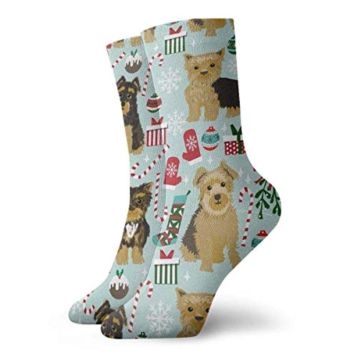 文法排気アンビエントQrriy女性の新しいヨーヨークリスマスソフトクリスマス膝ハイスストッキングスリッパソックス、クリスマス楽しいカラフルな靴下