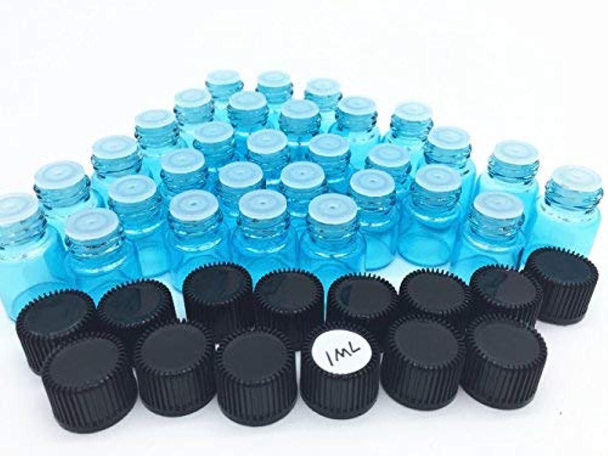 矛盾特にプラグElufly 100pc 1ML/2ML Sky Blue Glass Vials 6 Parts Essential Oil Reagent Bottles (100pc 1ML) [並行輸入品]