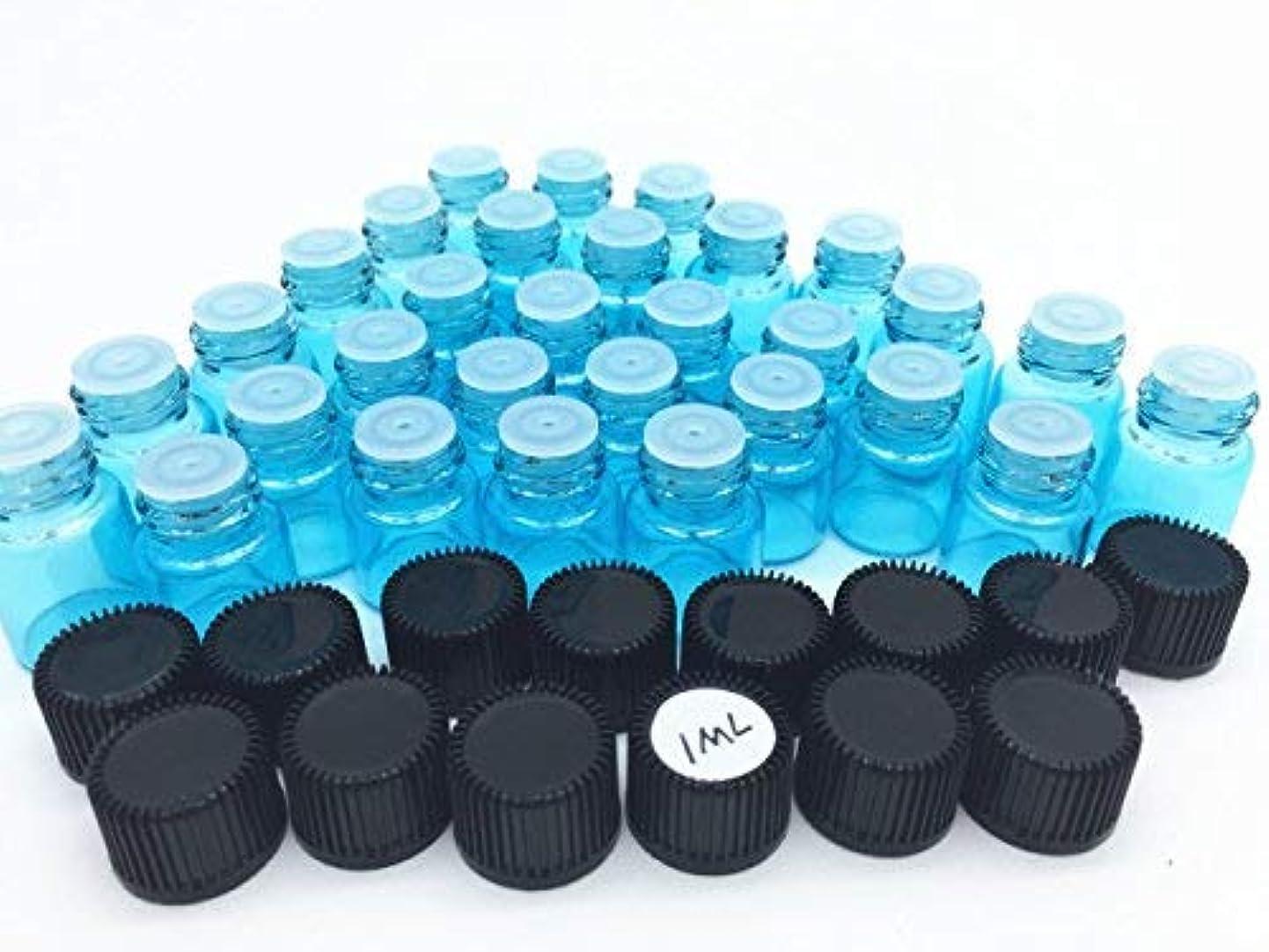 幸運なエミュレートする面倒Elufly 100pc 1ML/2ML Sky Blue Glass Vials 6 Parts Essential Oil Reagent Bottles (100pc 1ML) [並行輸入品]