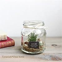 テラリウム エアプランツ ガラスボトル 造花 多肉植物 フェイクグリーン インテリア