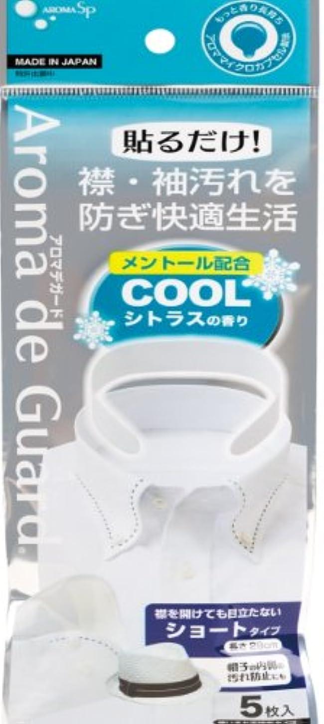 洗剤修羅場デンプシーアロマデガード クールシトラスの香り 5枚入