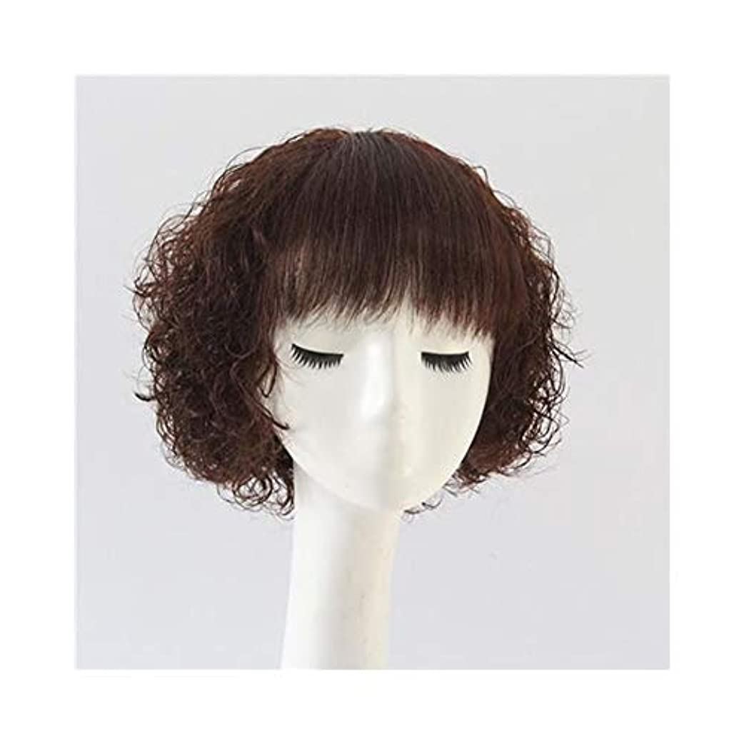 細部無唯物論YOUQIU 女性ファッションナチュラル耐熱性繊維ウィッグかつらのために100%実髪ショートカーリーヘア (色 : Dark brown)