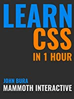 Learn CSS in 1 Hour