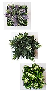 MedianField 【 ウォールグリーン 3個 セット 】 フェイクグリーン 観葉植物 造花 壁掛け 人工観葉植物 インテリア アンティーク 雑貨 人工 フェイク 壁掛 グリーン 緑 植物 (ウォールグリーン 3個セット)