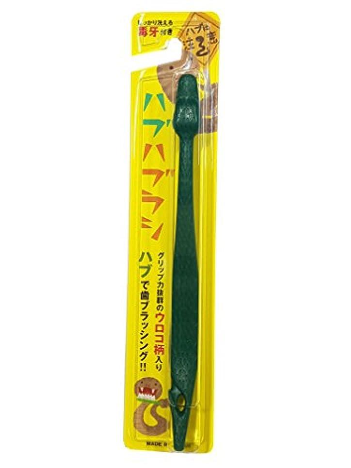 含意拡声器学期ハブハブラシ (緑 色) 沖縄 はぶ 歯ブラシ
